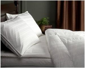 Pinzon Signature Pyrenees Hypoallergenic Goose Down Comforter Review