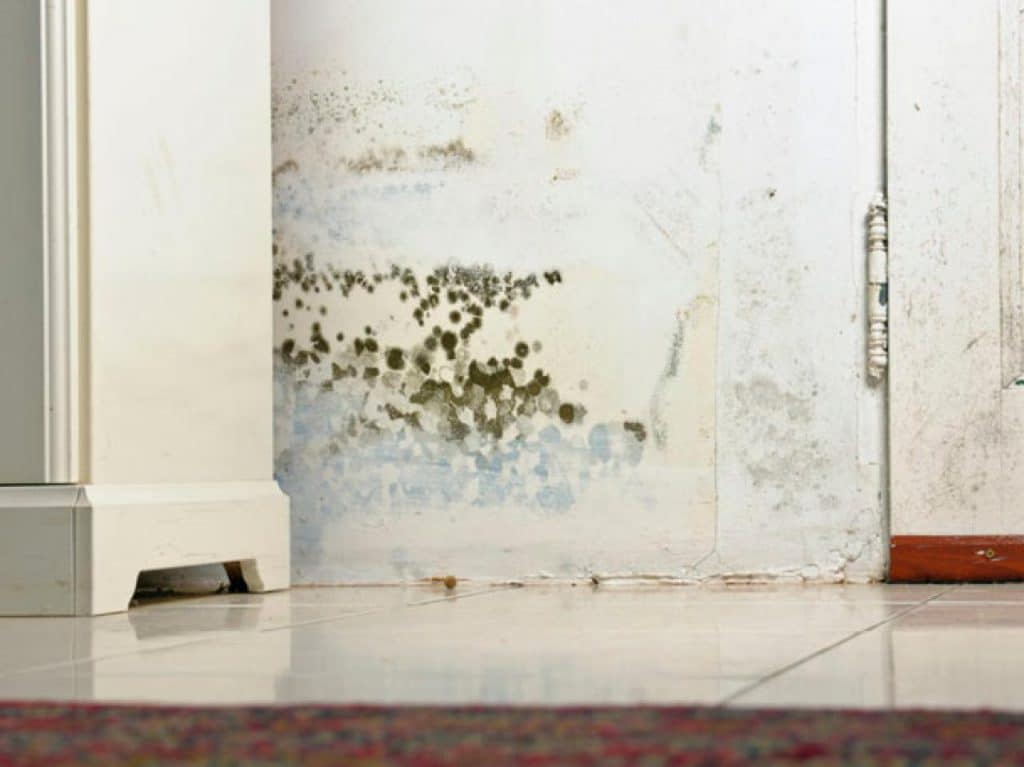 What Can I Do About A Gross Mildew Smell In My Bedroom