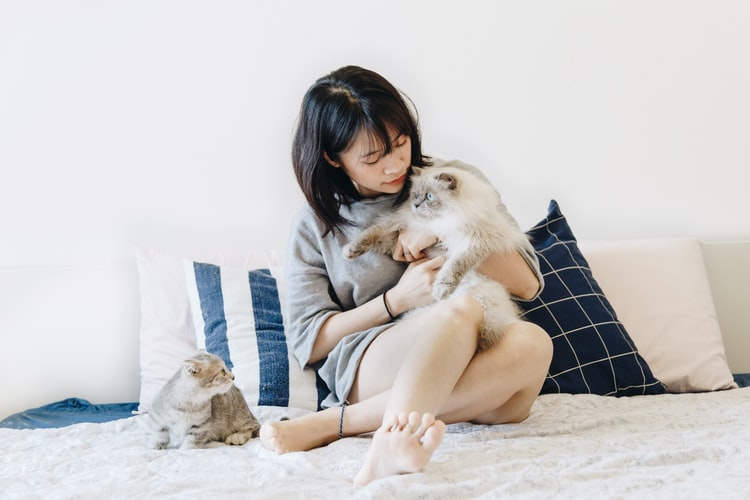 woman holding cat beside cooling pillow